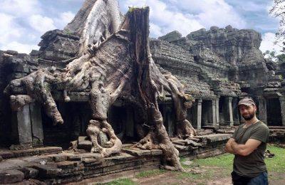 Angkor Ta Prohm albero