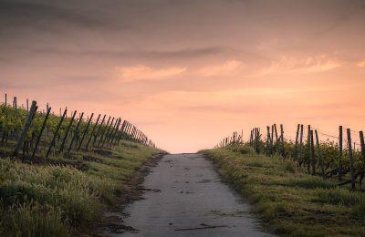Via degli Abati percorso