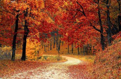 autunno-in-italia-15-mete-da-visitare