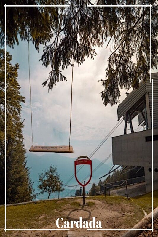 cardada-swing-the-world